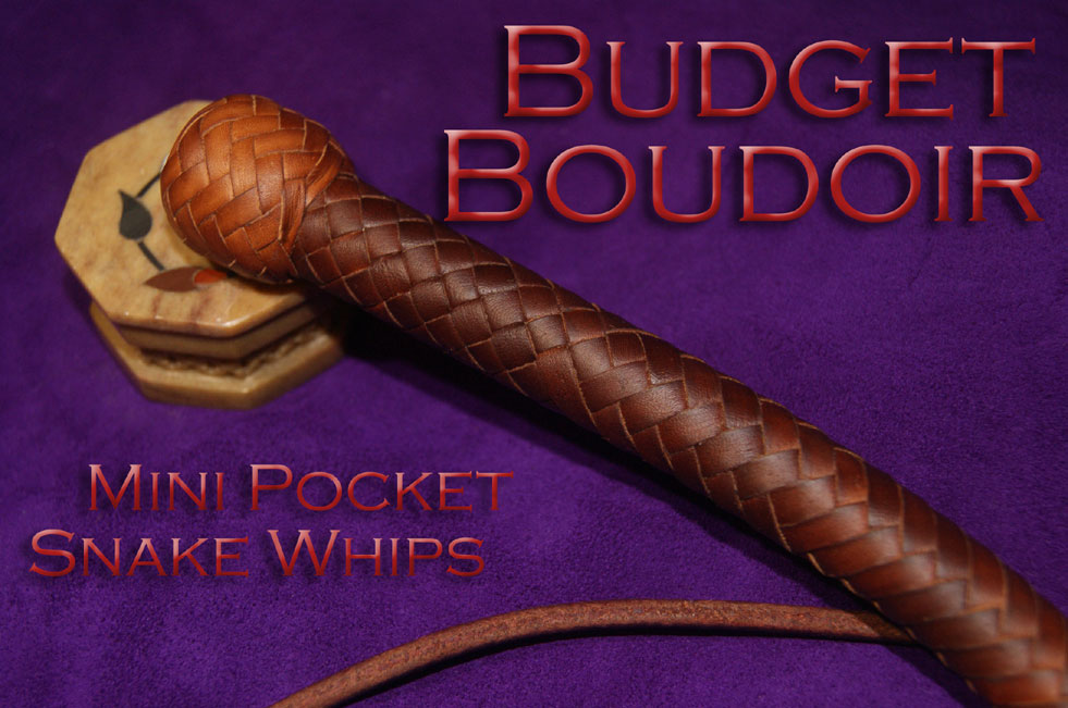 Budget Boudoir Mini Pocket Snake Whips cover