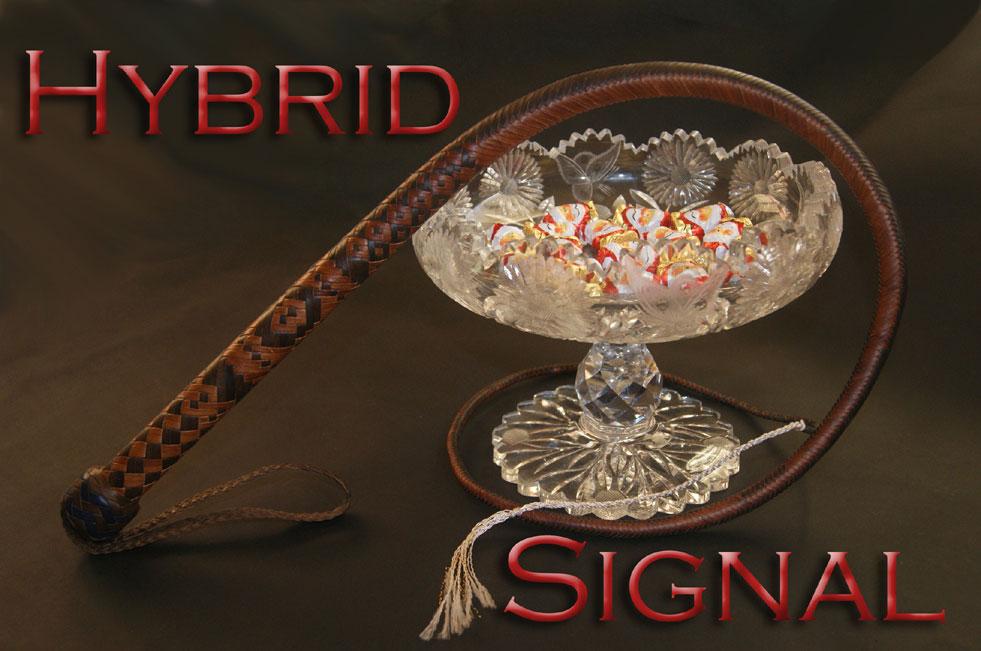 Hybrid Signal Whips Cover